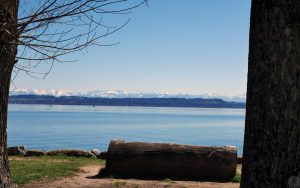 Lac_Mont_FLSH